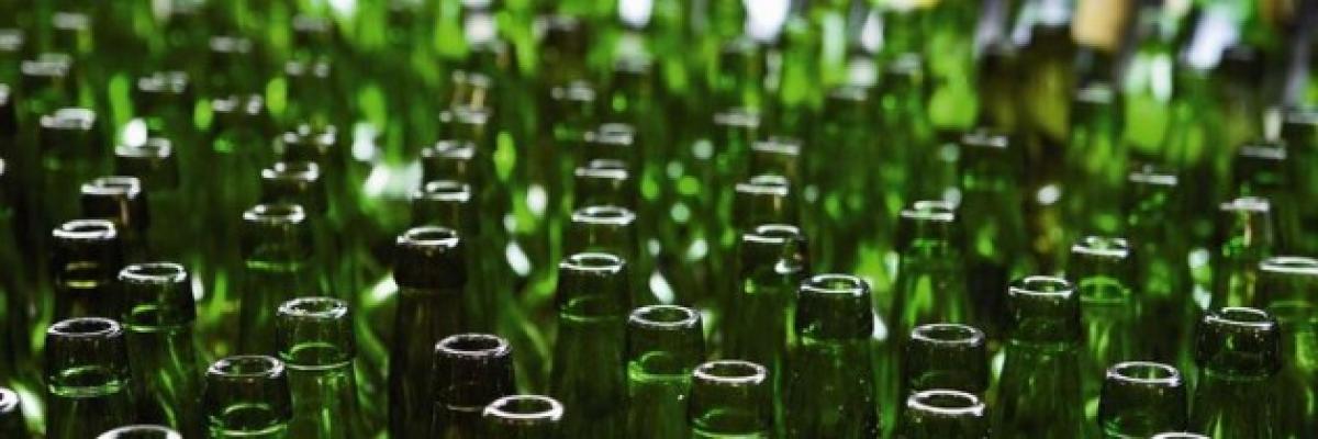 sidra botellas (1)