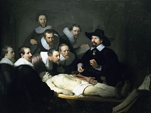 anatomia Sosa